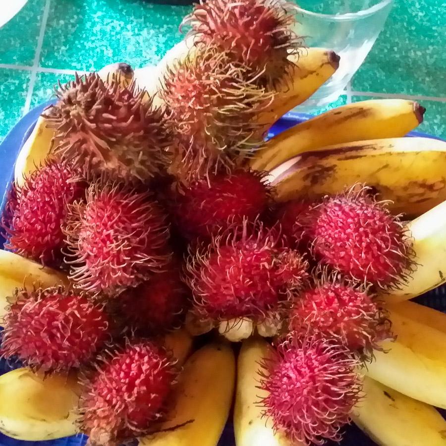 Fruta en Filipinas, banana y Rambutan