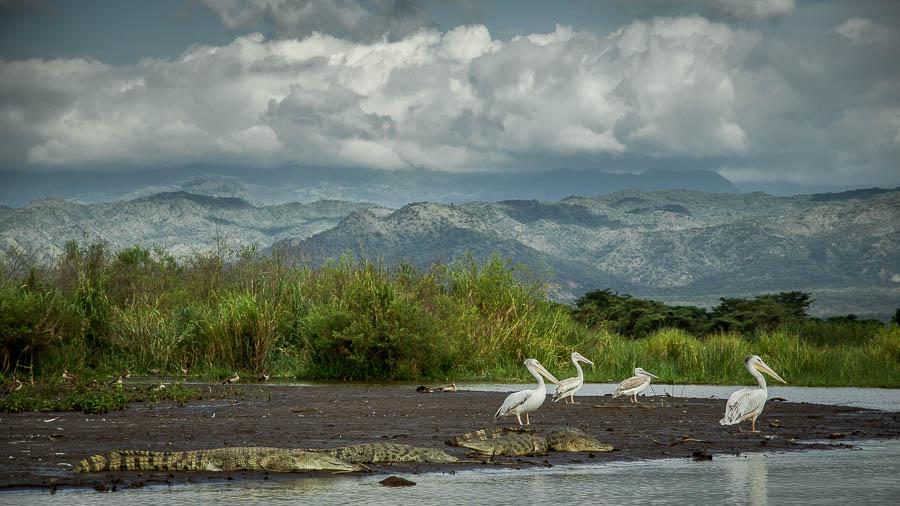 Lago Chamo en Arbaminch, Etiopía