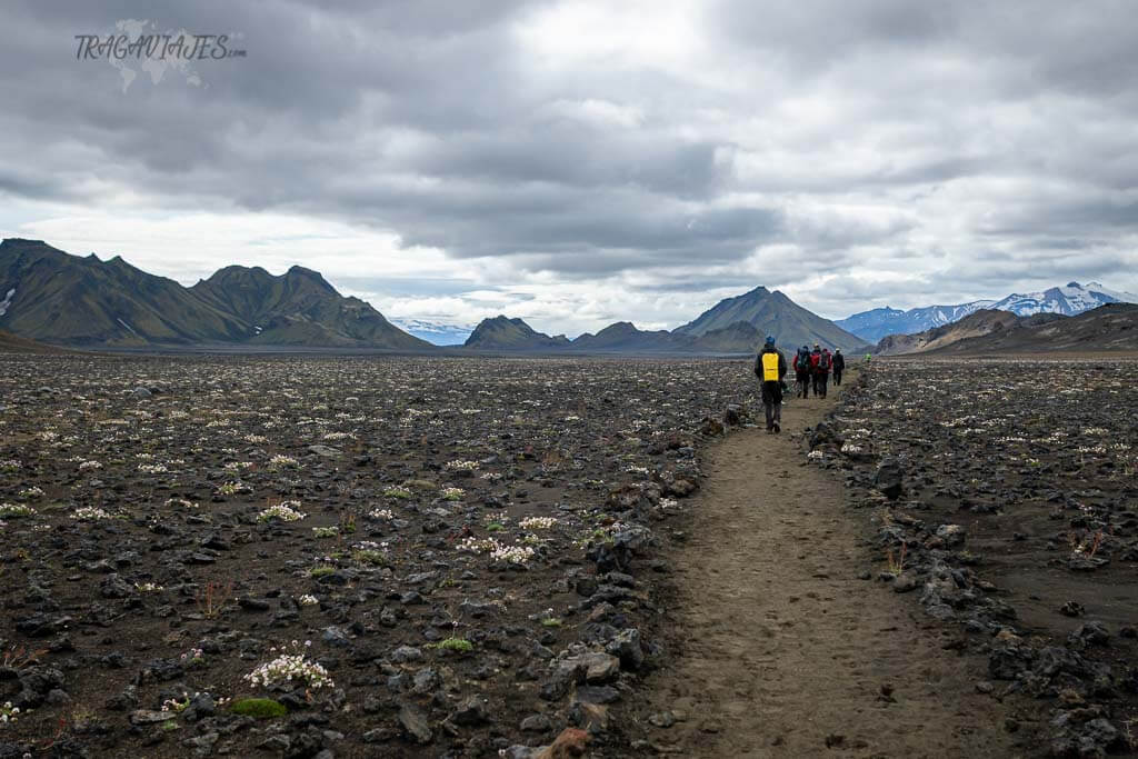 Highlands de Islandia - 3º etapa del trekking de Laugavegur