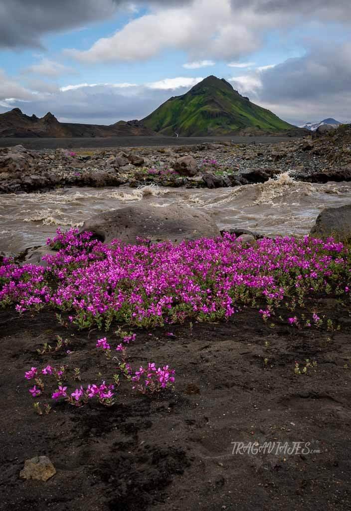 Highlands de Islandia - La fuerza de Islandia