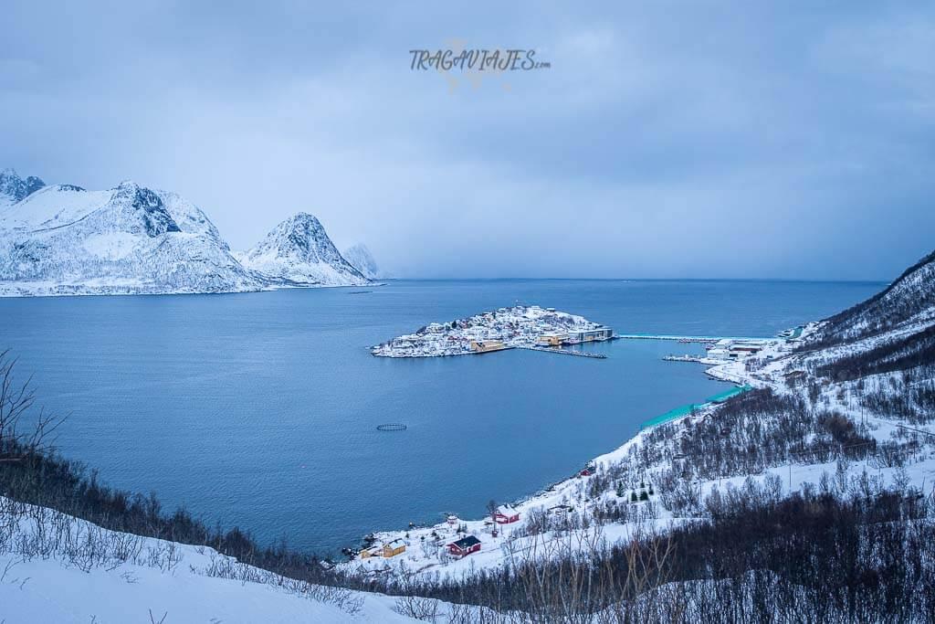 Imprescindibles que ver en Senja - Husøy