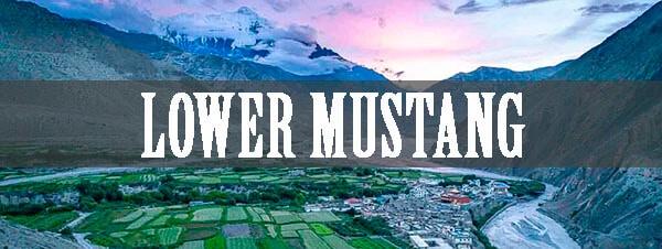 Lower Mustang