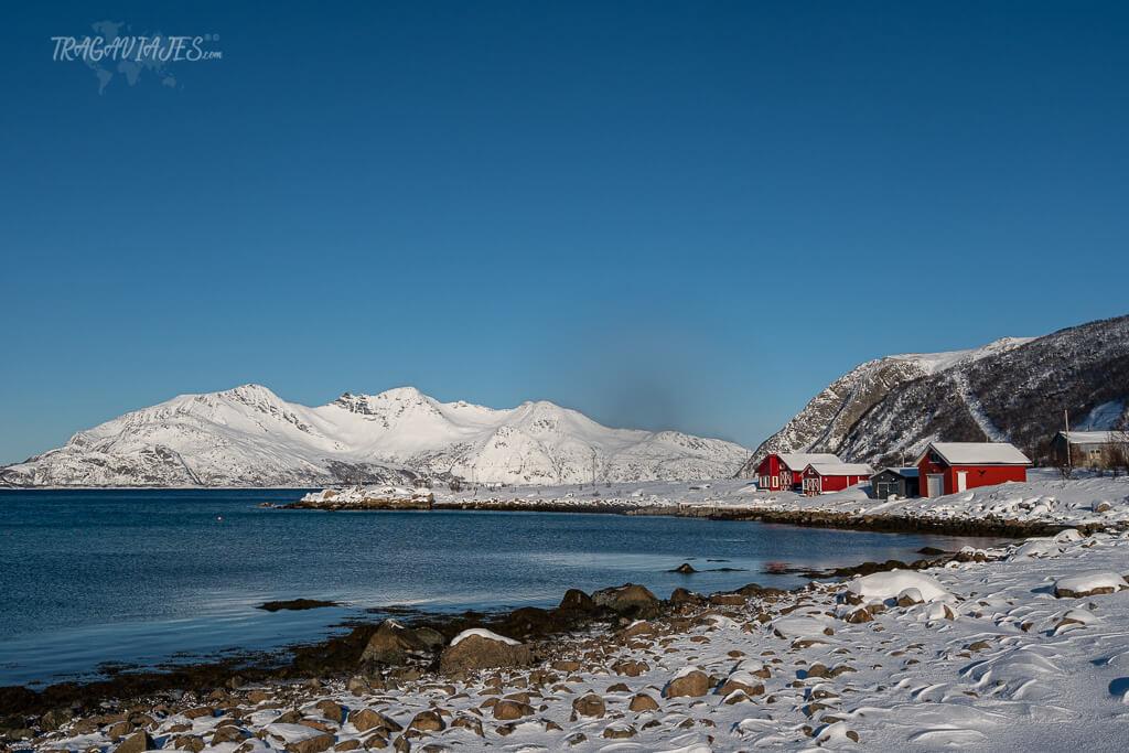 Excursión a la isla de Kvaløya