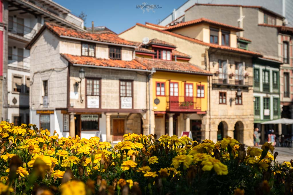 Qué ver en Avilés en un día - Plaza Domingo Álvarez Acebal