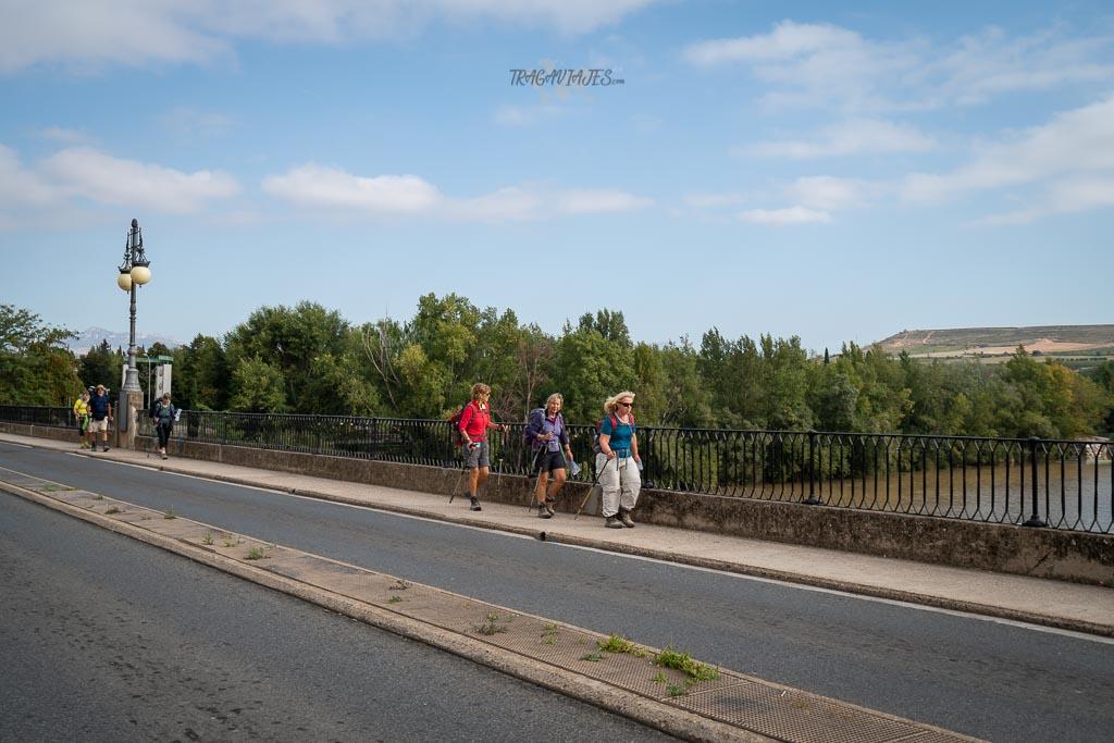 Qué ver en Logroño en un día - Peregrinos