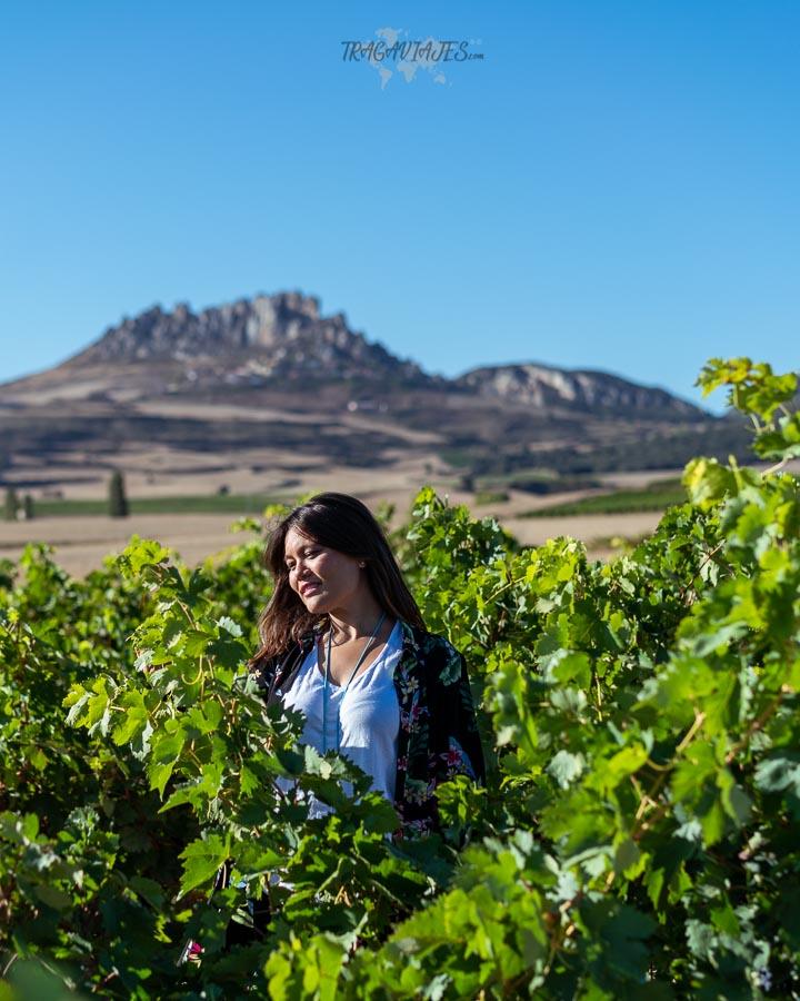 Qué ver en la Rioja en 3 días - Cellorigo