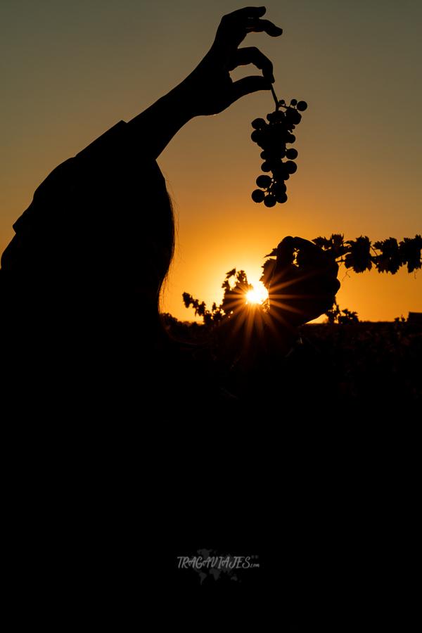 Qué ver en la Rioja en 3 días - Atardecer en la Rioja