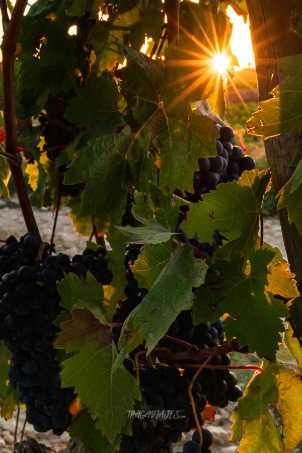 Qué ver en la Rioja en 3 días - Atardecer