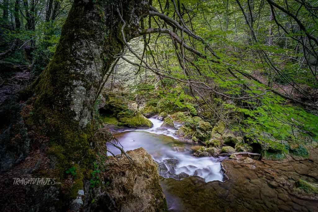 Ruta nacedero del río Urederra - Colores