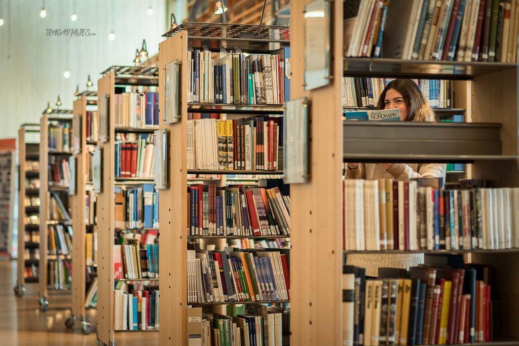Viaje a Laponia noruega - Biblioteca del Parlamento Sami Noruego