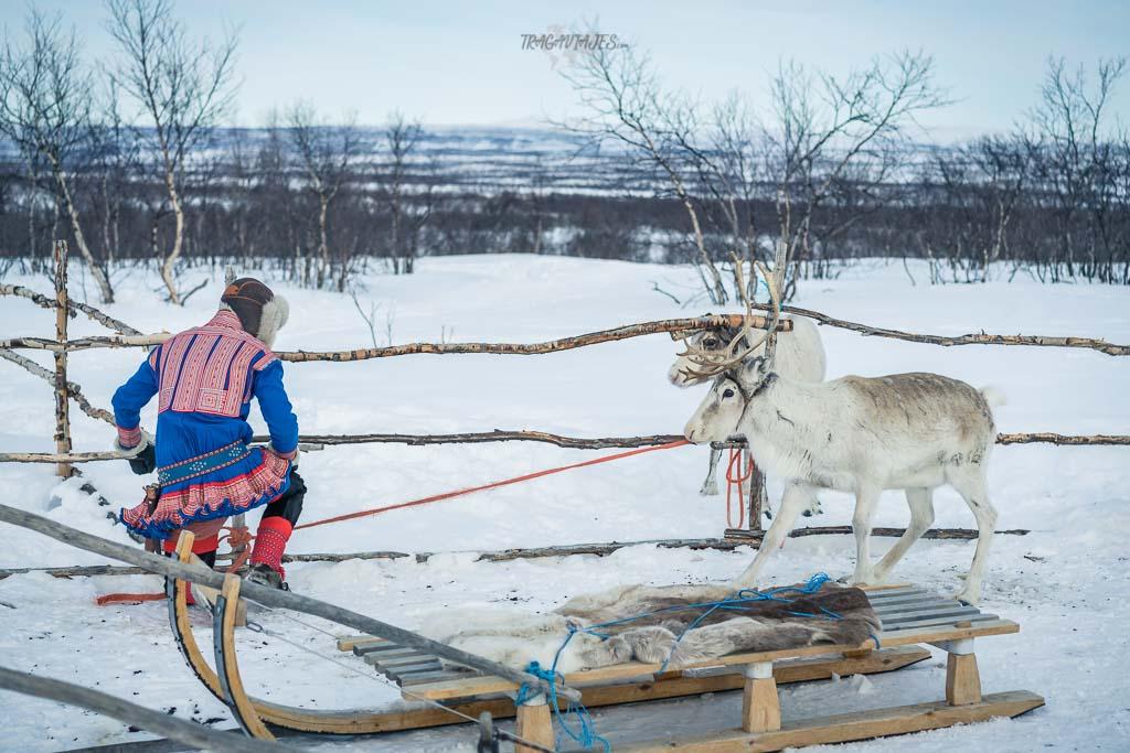 Viaje a Laponia noruega - Campamento sami