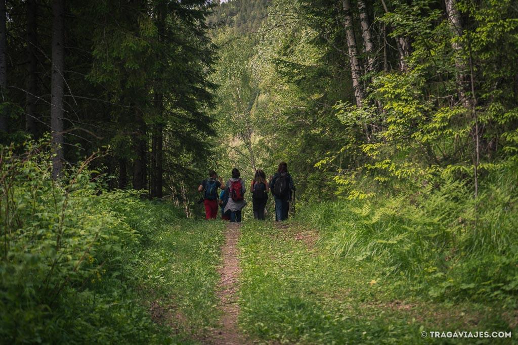 camino-de-san-olav-nidaros-noruega-8