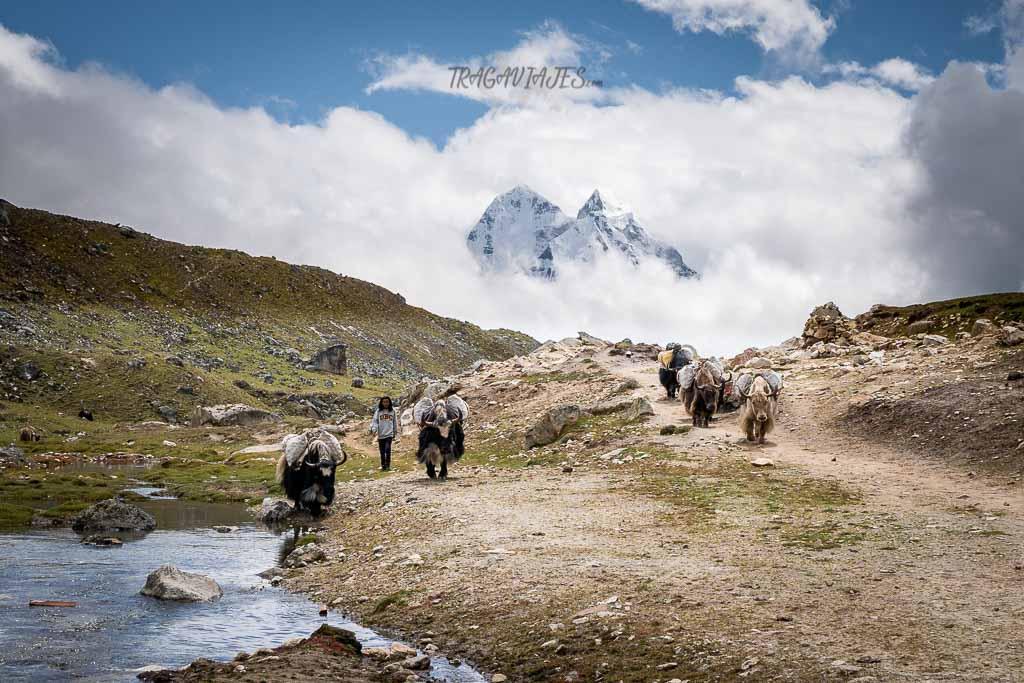 Campo base del Everest - De camino a Dzongla
