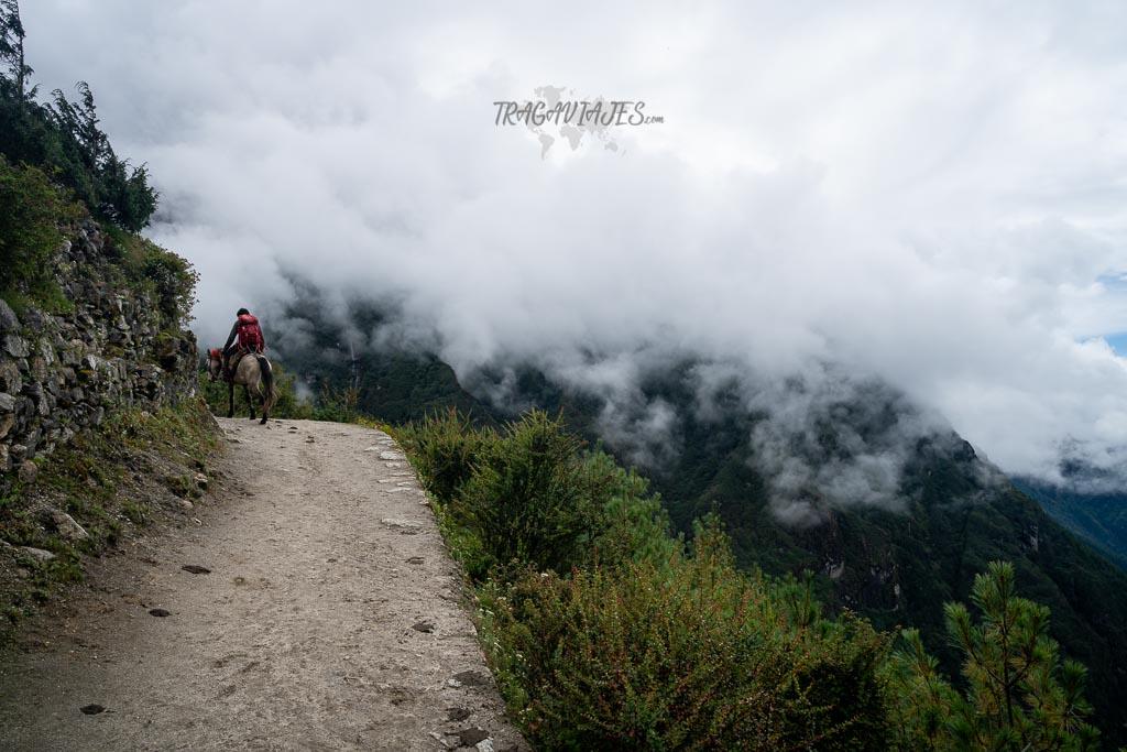 Campo base del Everest y Gokyo - De Dhole a Monjo