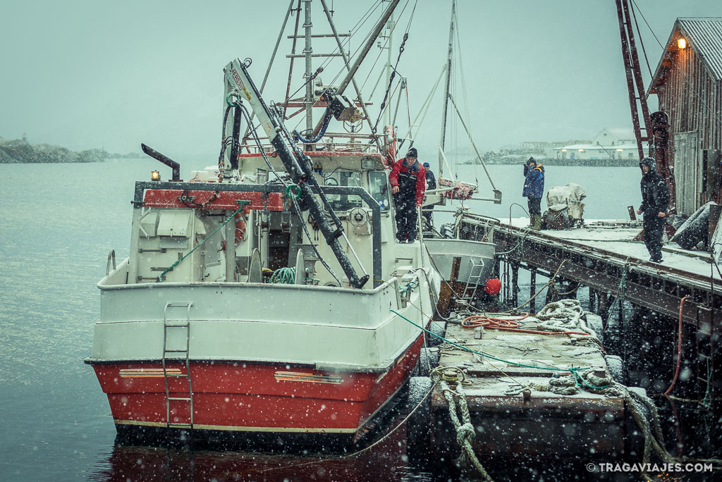 Qué ver en las islas Lofoten y qué hacer - Stamsund