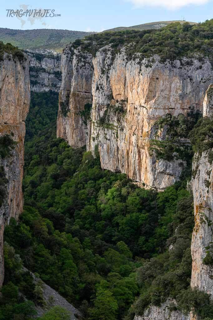 Foces de Navarra - Foz de Arbayún