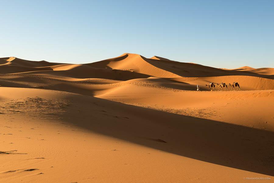 Desierto de Merzouga, dunas de Erg Chebbi, Marruecos