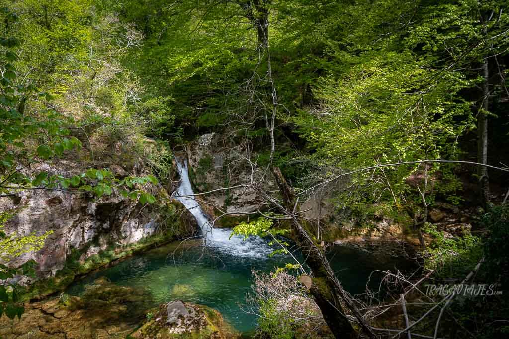 Ruta al nacedero de Urederra - Cascadas