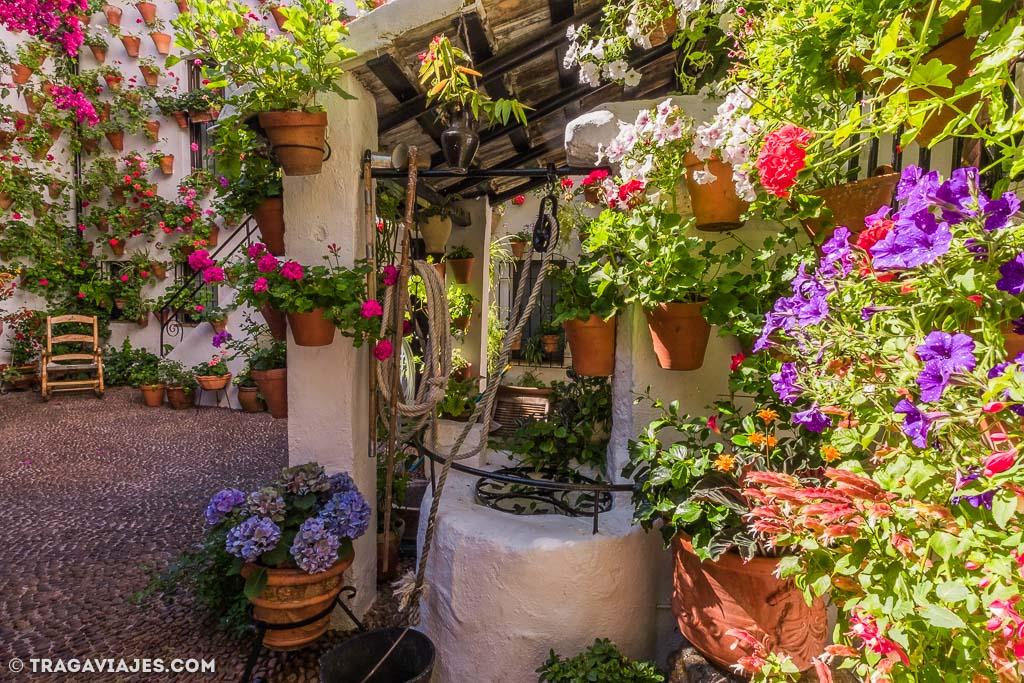 patios-de-cordoba-17-patio-martin-de-la-roa-7