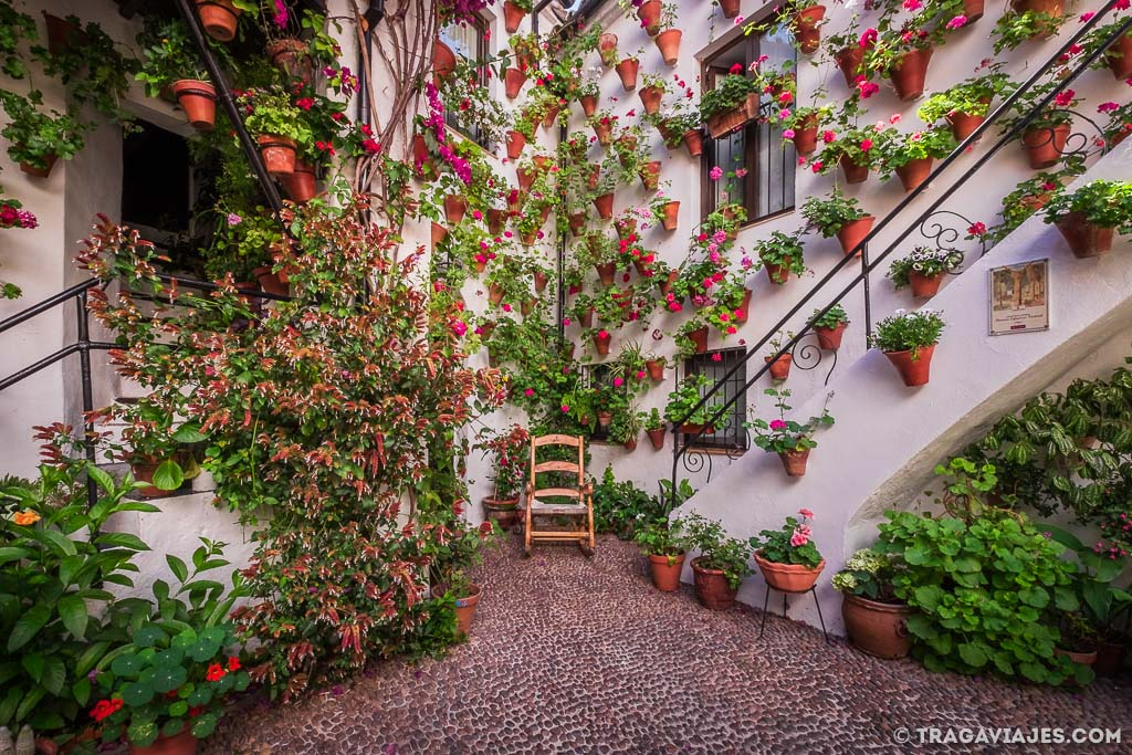 Los patios de Córdoba