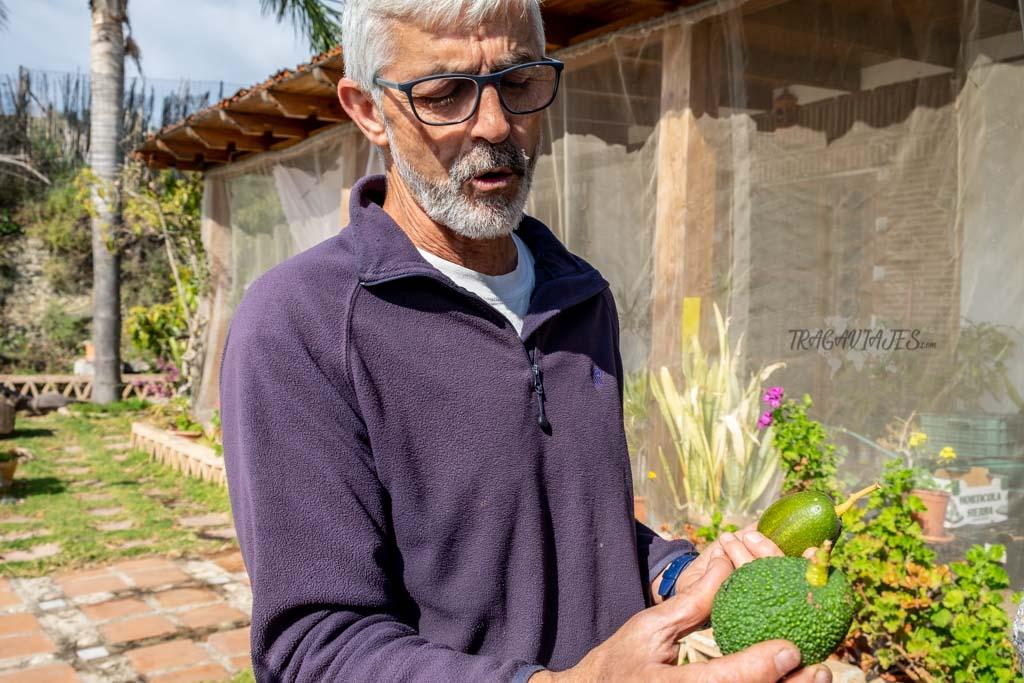 Qué hacer en Salobreña- Visita guiada Finca Matagallares