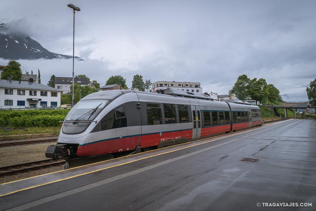 que hacer en la provincia de Oppland tren rauma