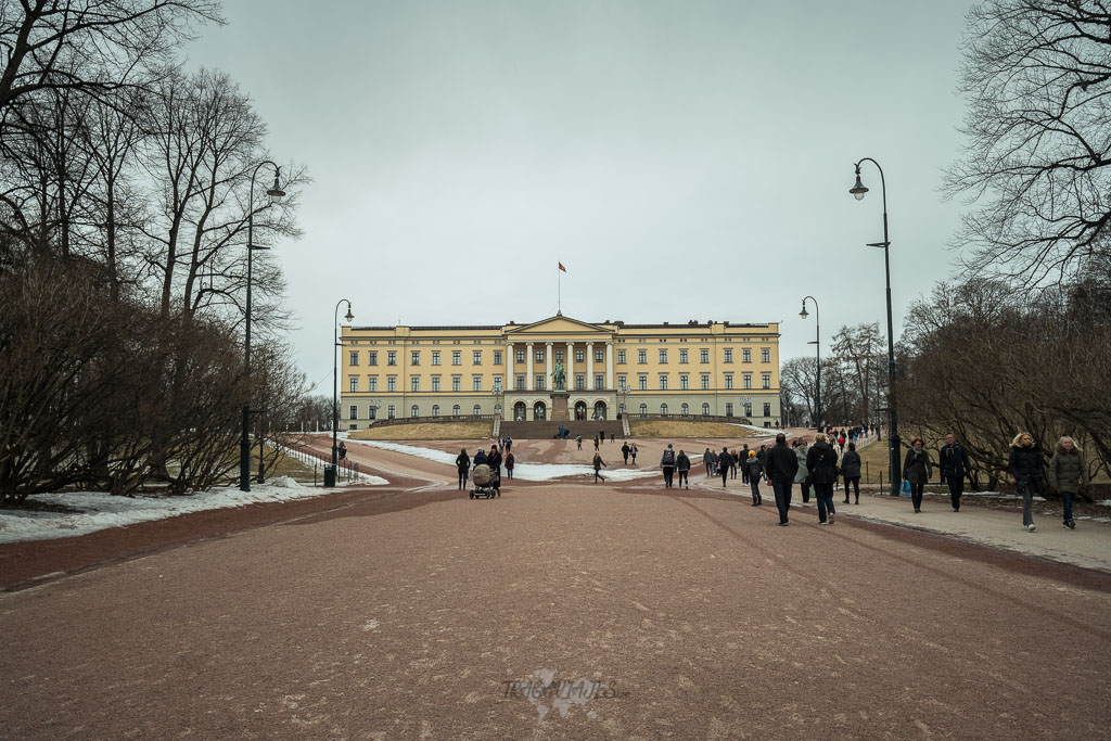 Planes de Oslo en Invierno - Visitar el Palacio Real