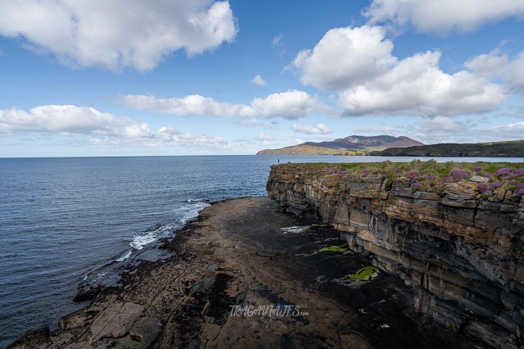 Ruta en coche por Irlanda - Muckros Heard
