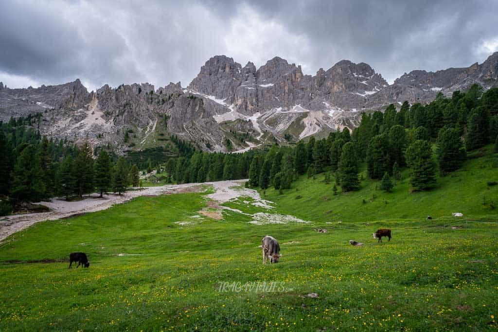 De camino a las Torres de Vajolet en los Dolomitas