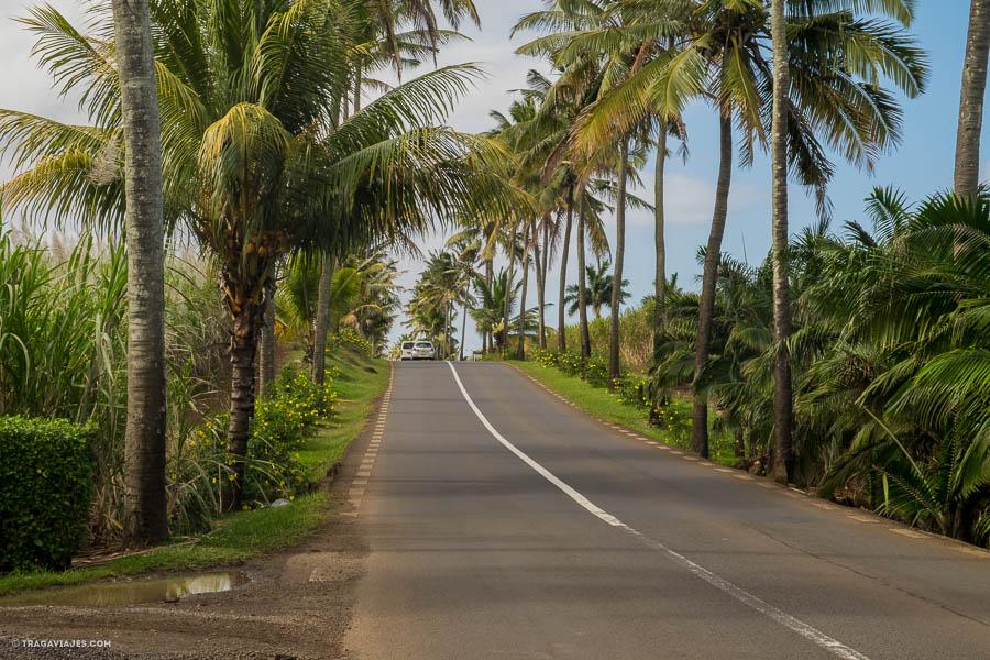viaje-a-isla-mauricio-18
