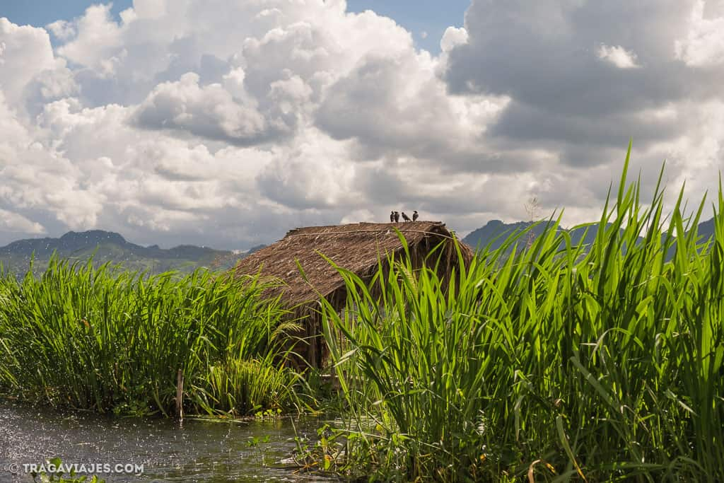 viaje-en-bote-inle-pekon-myanmar-birmania-48